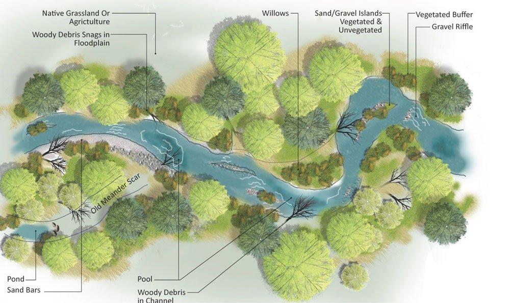 River-Health