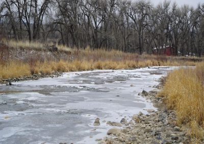 #3 Wild Natural Area & Neighbors
