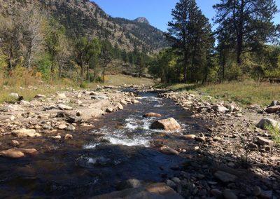 North Fork Restoration Upstream