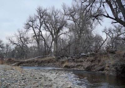 Big Thompson River at the future Wild Natural Area (not yet open to the public)