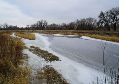 An overly-widened and too shallow river does not provide as many benefits to wildlife
