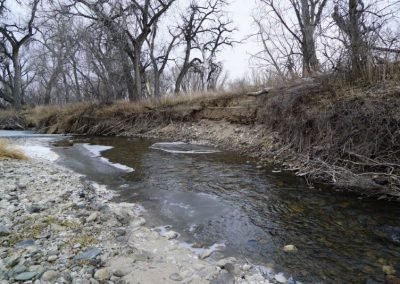 Pre-restoration river bank destabilized by erosion