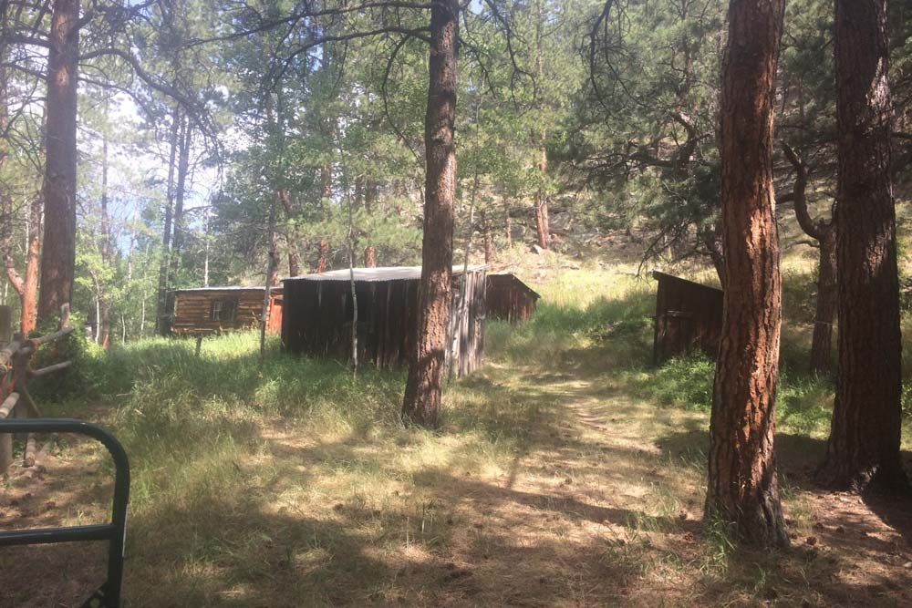 #18 2021 Defensible Space Demonstration Project